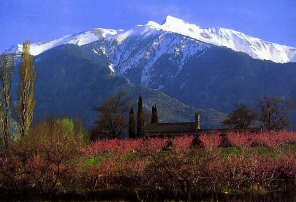 Mt. Canigou, near Casals's home in French Catalonia